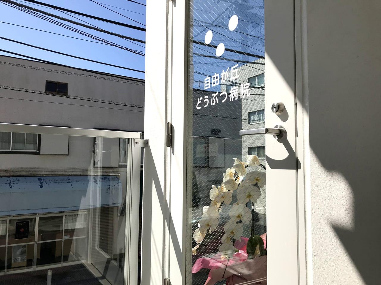 世田谷区九品仏に新しくどうぶつ病院オープン