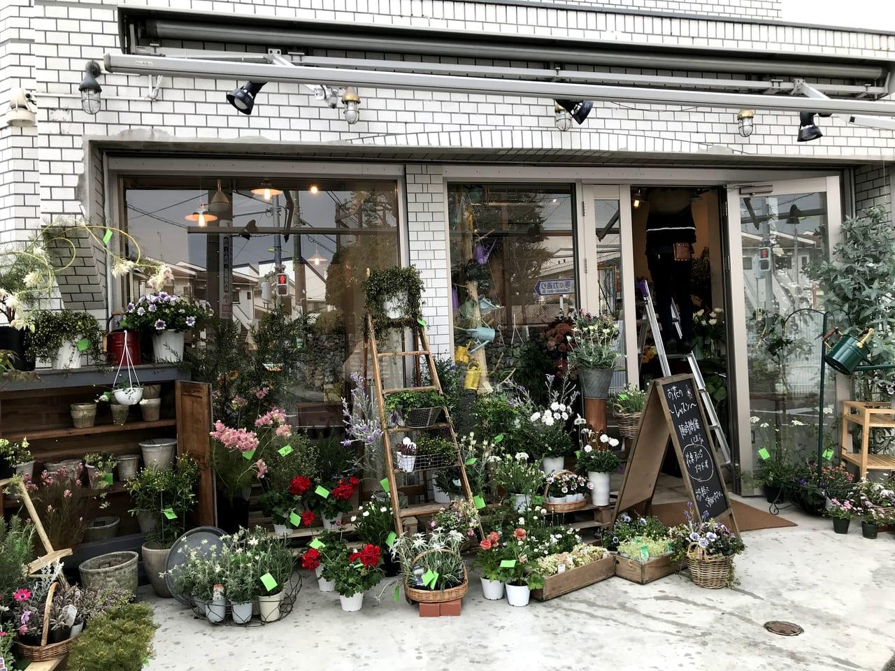 世田谷区等々力、中町に新しい花屋さんfoo-floオープン